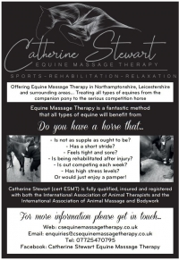 Catherine Stewart Equine Massage