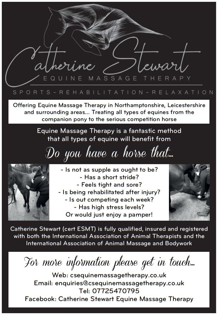 Catherine Stewaer Equine Massage