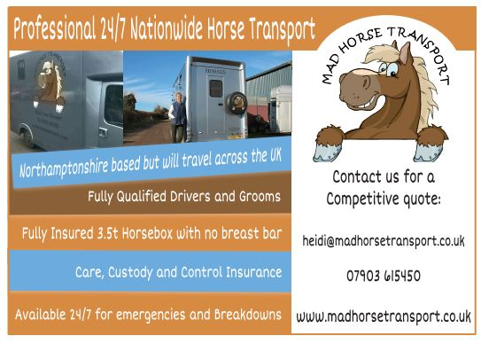 Mad Horse Horse Transport
