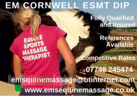 Em Cornwell ESMT Dip Equine Sports Therapist and Saddle Fitter